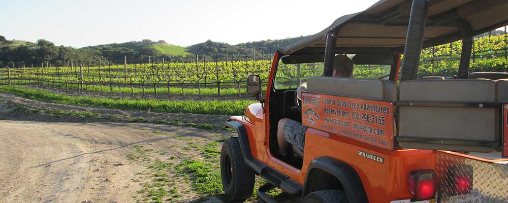 Mid-Week Special Wine Tour